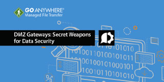 DMZ Secure Gateways: Secret Weapons for Data Security