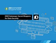 DMZ Secure Gateways: Secret Weapons for Data Security, the white paper