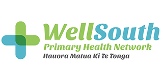 wellsouth