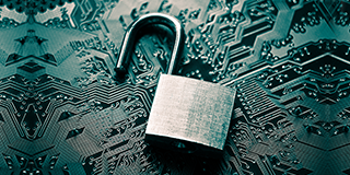 Has your customer data been exposed to a breach? Here's what you should do.