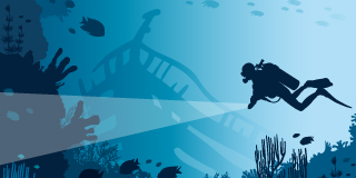 A deep sea diver looking in a shipwreck for a way to automate workflows